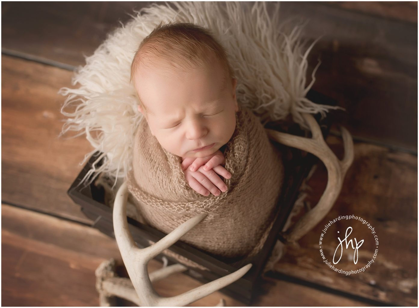 Aledo Newborn Photographer