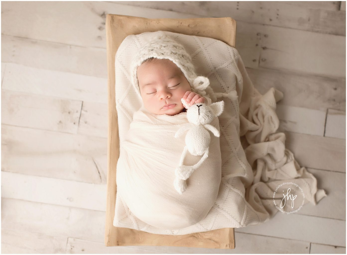 Arlington Newborn photography